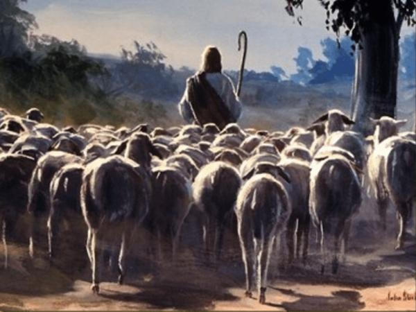 Dobry Pasterz – (J 10,11-18)