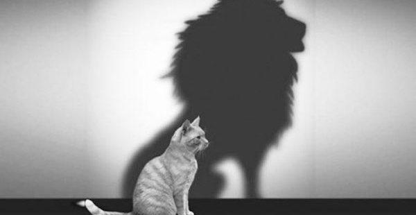 Poczucie własnej wartości – (Mt 15,21-28)