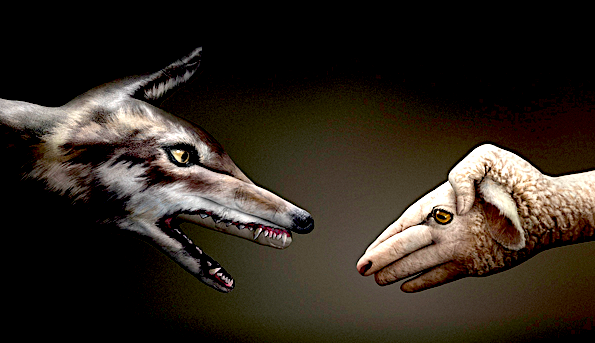 Wilk i owca – (Łk 10,1-9)