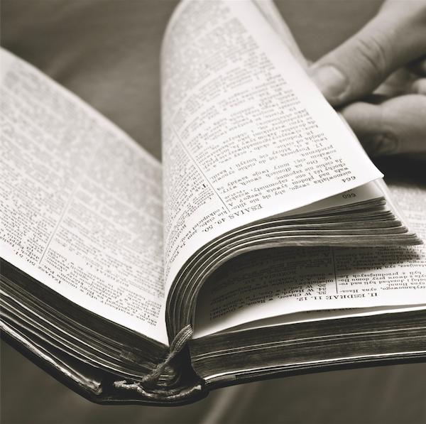 Słowo Boga – (Łk 11, 27-28)