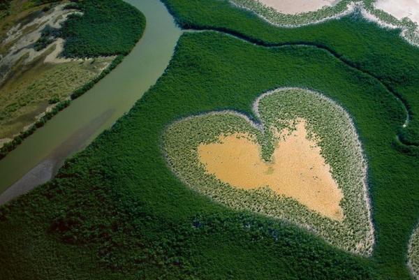 Ziemia naszych serc – (Mt 13,1-23)