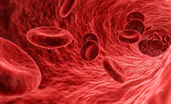 Więzy krwi – (Mt 12,46-50)