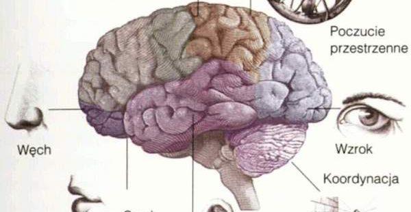 Wolność zmysłów