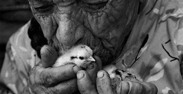 Prawdziwa dobroć